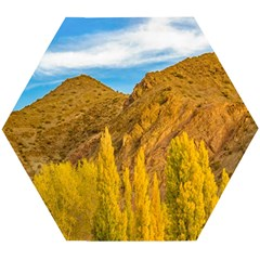 El Leoncito National Park, San Juan Province, Argentina Wooden Puzzle Hexagon by dflcprintsclothing