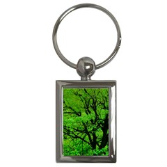 Big Trees, El Leoncito National Park, San Juan, Argentina Key Chain (rectangle) by dflcprintsclothing