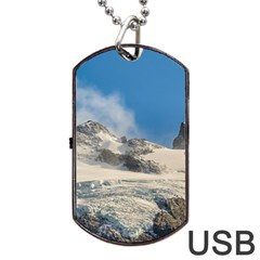 Snowy Andes Mountains, Patagonia - Argentina Dog Tag Usb Flash (one Side) by dflcprintsclothing