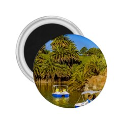 Parque Rodo Park, Montevideo, Uruguay 2 25  Magnets by dflcprintsclothing