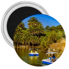 Parque Rodo Park, Montevideo, Uruguay 3  Magnets by dflcprintsclothing