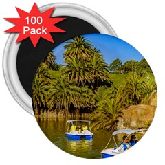 Parque Rodo Park, Montevideo, Uruguay 3  Magnets (100 Pack) by dflcprintsclothing