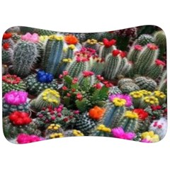 Cactus Velour Seat Head Rest Cushion