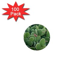 Green Cactus 1  Mini Magnets (100 Pack)  by Sparkle