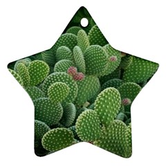 Green Cactus Star Ornament (two Sides) by Sparkle