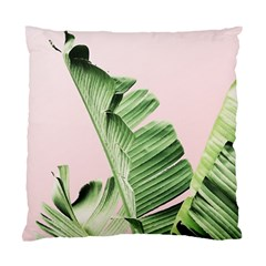 Palm Leaf Standard Cushion Case (one Side) by goljakoff