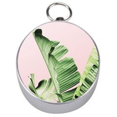 Palm Leaf Silver Compasses by goljakoff