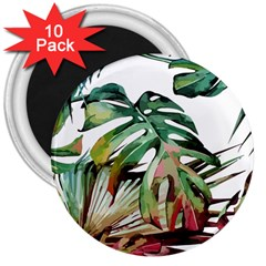 Watercolor Monstera Leaves 3  Magnets (10 Pack)  by goljakoff