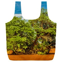 Carob Tree, Talampaya National Park, La Rioja, Argentina Full Print Recycle Bag (xxl)