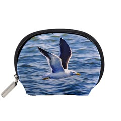 Seagull Flying Over Sea, Montevideo, Uruguay Accessory Pouch (small) by dflcprintsclothing