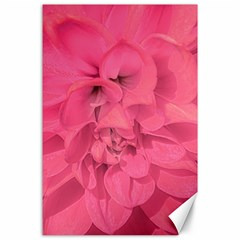 Beauty Pink Rose Detail Photo Canvas 24  X 36  by dflcprintsclothing