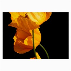 Yellow Poppies Large Glasses Cloth (2 Sides) by Audy