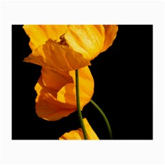 Yellow Poppies Small Glasses Cloth (2 Sides) by Audy