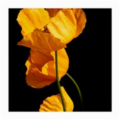 Yellow Poppies Medium Glasses Cloth by Audy