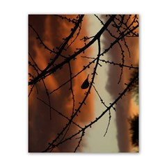 Bird On Branches Poster 16  X 20