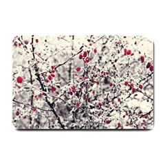 Berries In Winter, Fruits In Vintage Style Photography Small Doormat