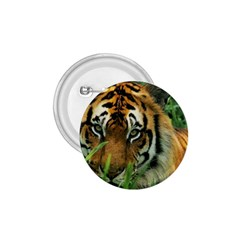 Tiger 1 75  Button by ironman2222