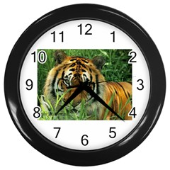 Tiger Wall Clock (black) by ironman2222