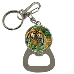 Tiger Bottle Opener Key Chain by ironman2222
