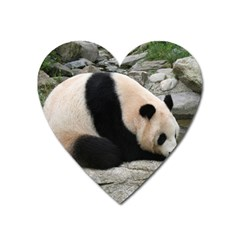 Giant Panda Magnet (heart) by ironman2222