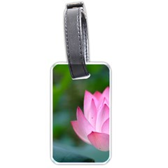 Red Pink Flower Luggage Tag (one Side) by ironman2222