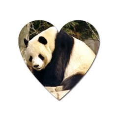 Giant Panda National Zoo Magnet (heart) by rainbowberry